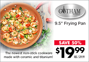 "Gotham Steel 9.5"" Frying Pan"